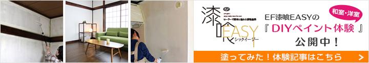 EF漆喰EASYのペイント塗装記事