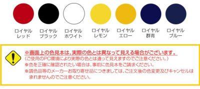 ロイヤルカラー 0.7L  (超耐久性濃縮カラーペースト/塗料/ペンキ/看板/屋外/大同塗料)