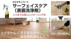 サーフェイスケア(表面洗浄剤) 750ml (ニッシンイクス/ルビオモノコート)